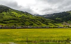 1423_2016_05_24_sterreich_Dorfgastein_MRCE_dispolok_ES_64_F4_-_026_DISPO_6189_925_mit_INTERCOMBI_KV_&_Rpool_6185_686_Villach (ruhrpott.sprinter) Tags: railroad schnee salzburg train germany logo deutschland graffiti austria ic sterreich diesel natur wiese eisenbahn rail zug cargo 64 berge nrw passenger es lm blume fret ore gelsenkirchen ruhrgebiet f4 freight bb badgastein locomotives 189 lokomotive amtc cityshuttle sprinter badhofgastein ruhrpott gter 1144 dorfgastein ekol 1116 dispo europischer 6189 mrce tauernbahn lokomotion reisezug rpool dispolok nordrampe ellok cargoserv logserv intercombi lokfhrerschein gastainertal rocktainer