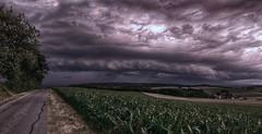 its time to escape... (Florian Grundstein) Tags: wood trees sunset storm clouds abend licht sonnenuntergang sundown wolken thunderstorm florian gewitter a6 stimmung oberpfalz sturm a93 unwetter grundstein sturmfront vohenstraus kaltluftfront