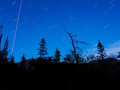 World Turner (Tk_White) Tags: park trees sky newfoundland star mark trails olympus ii 12mm 20 butternut omd em5 astrometrydotnet:status=failed livecomp astrometrydotnet:id=nova1620795