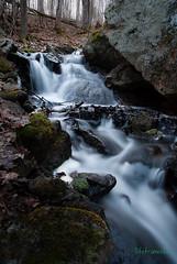 2012-03-Frontenac-179 (chrisbrown11) Tags: park ontario nature waterfall hiking backcountry provincial frontenac