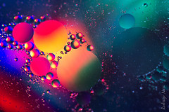 Abstract (drigons) Tags: abstract color macro water colors gua colorful drop 100mm oil dye abstrato leo colorido corante canon60d