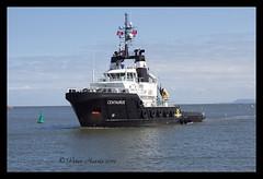 IMG_0428-Centaurus (peter harris41) Tags: boat ship vessel tugboat hartlepool antiguabarbuda centaurus pdports imo9433755