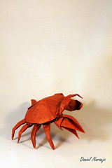 Cangrejo (Daniel Naranjo) Tags: art paper origami craft crab papel cangrejo