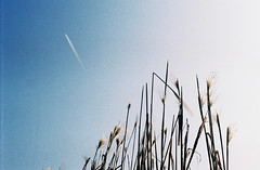 Sputnik (NenaRayo) Tags: blue sky film azul analog plane germany deutschland fly himmel cielo alemania blau sputnik flugzeug avion trier vuelo fliegen nikkormat volar treveris ruwer