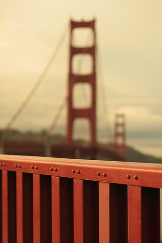Golden Gate Bridge Fence