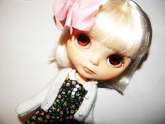 Poppy xx