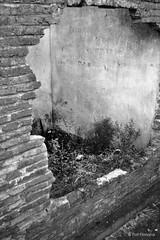 Casa abandonada (-Patt-) Tags: old blackandwhite bw blancoynegro uruguay plantas minas bn oldhouse abandonedhouse ladrillos sudamérica