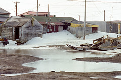 Ukpiagvik (lauritadianita) Tags: houses house snow ice alaska puddle frozen spring nikon dirt shack telephonepoles sled dirtroads weatheredwood sleds barrow northslope breakup snowmachine nikonfm snowgo northernalaska woodensleds ukpiagvik iupiaq hubcommunity