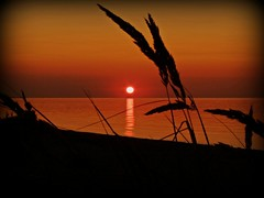 Sundown on the Baltic Sea (FotoArtCircle) Tags: summer strand landscape meer sonnenuntergang sundown sommer balticsea sonne ostsee landschaften hohenfelde strandhafer richardvonlenzano rememberthatmomentlevel1 rememberthatmomentlevel2 rememberthatmomentlevel3 sundownonthebalticsea sonnenunterganganderostsee malmsreg