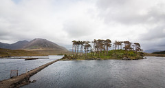 A Fairytale at Derryclare (halpinland) Tags: lake galway connemara derryclarelake tokina1116mmf28 fairytaleisland