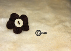 felt flower (sarah-alfatesh) Tags: brown flower sarah canon handmade softness silk felt button handiwork