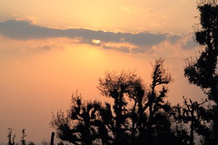 Before the sunset (Saroj Mishra) Tags: nature trek himalaya pindariglacier