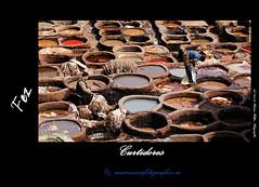 Chouwara, Fez (Cstor Villar) Tags: voyage viaje color foto mc viajes fez marruecos marroc fes fotografo fas marroco fotografa fotografos curtidores  almagrib     fotografosdeboda clasesdefotografia  fotosocial fs   fotosmascotas cstorvillar castorvillar villarsabucedo wwwcastorvillarfotografia fotografosenvigo reportajesdebodaenvigo fotografoscomunionenvigo cursosdefotografiaenvigo clasesdefotografiaenvigo marrocc villarsabucedocstor castorvillarfotografia marruecospordescubrircom wwwmarruecospordescubrircom curtidoresdefez marruecosfotograficoes castorvillarfotografiaes fotografasocialenvigo wwwcastorvillarfotografiaes almagribiy   wwwmarruecosfotograficoes wwwdescubremarruecoscom