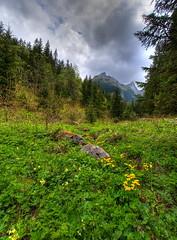Na szlaku w Dolinie Maej ki (Mariusz Petelicki) Tags: hdr tatry giewont tatramountains mariuszpetelicki dolinamaejki