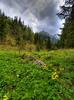 Na szlaku w Dolinie Małej Łąki (Mariusz Petelicki) Tags: hdr tatry giewont tatramountains mariuszpetelicki dolinamałejłąki