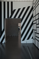 Wall Drawings I (zahikel) Tags: sol wall drawings lewitt zahikel2012musecentrepompidoumetzexposition1917