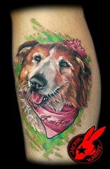 Dog Portrait Tattoo by Jackie Rabbit (Jackie rabbit Tattoos) Tags: city pink portrait dog tattoo puppy star virginia cool colorful good girly awesome great roanoke va pup jackierabbit