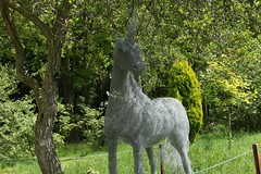 Unicorn (Tommy McCormick) Tags: june canon yorkshire arboretum unicorn 2012 thorpperrow eos500d