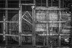Dead Tree At The Silo (Mike Schaffner) Tags: wood old blackandwhite bw tree abandoned monochrome dead us blackwhite bush industrial texas unitedstates silo frame derelict pulley lissie ricedryer