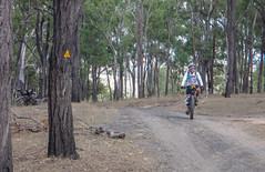 Old Esk Road (Neil Ennis) Tags: cycling story mtb bnt southburnett oldcoachroad bicentennialnationaltrail bunyamtsbikepack2016 httpnbeme8490 oldeskroad