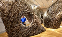 """Shindig"" (2015) by Patrick Dougherty at Renwick Gallery, Washington, D.C. (lhboudreau) Tags: art museum architecture washingtondc smithsonian dc washington sticks artwork gallery branch artgallery branches galleries pennsylvaniaavenue installation stick weaving shindig artexhibition installations smithsonianinstitution architectures weavings americanart patrickdougherty largescale artexhibitions smithsonianamericanartmuseum largescaleinstallation willowsaplings largescaleinstallations"