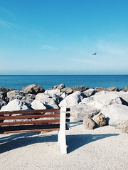 Seaside (chloejadeyoung) Tags: morning travel family blue sea summer vacation sky usa sun holiday hot bird beach nature america bench landscape outdoors photography seaside student rocks warm break natural florida miami horizon sunny abroad heat humid stil 2015