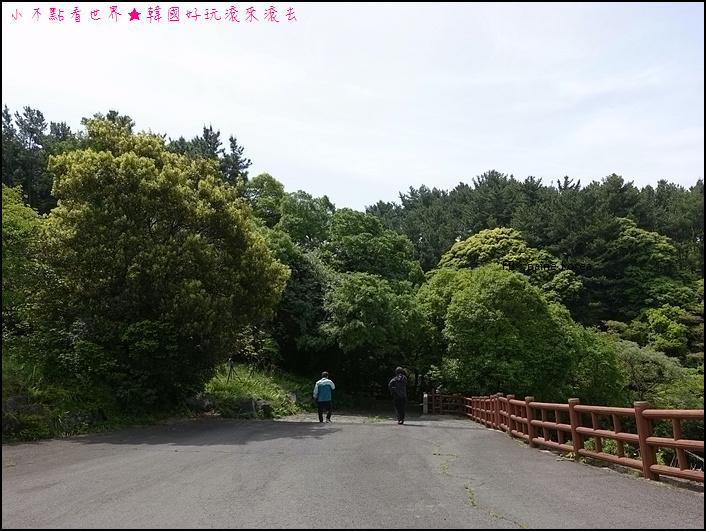 濟州安德溪谷 (2).JPG