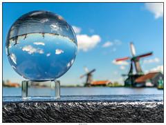 Glazenbol molens 3 (voorhammr) Tags: gras zon zaanseschans zaandam molens 2016 vakwerk huisjes blauwelucht jolandakraus