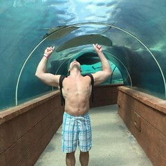 Sting rays above (ddman_70) Tags: shirtless muscle boardshorts