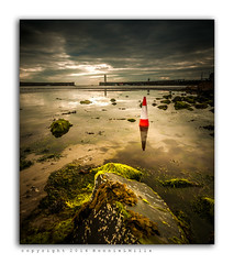 Still No Parking (RonnieLMills) Tags: county ireland red lighthouse white seascape seaweed reflections landscape nikon skies moody traffic angle cone harbour tide wide down incoming northern tamron donaghadee 1024 d90 innamoramento