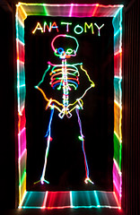 Anatomy (FDU4) Tags: longexposure light lightpainting black color lines vertical dark painting skeleton skull rainbow colorful spectrum stripes text indoor science symmetry led human anatomy bones v24
