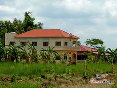 Guesthouse- Koh Ker.jpg