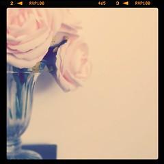 small things (lookseebynaomifenton) Tags: pink flowers glass vintage vase iphone iphoneography instagram