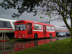 One wet 'W' and a white elephant. (Renown) Tags: heritage buses apt nbc cheshire crewe preserved alexander coaches daimler preservation fleetline standee pmt heritagecentre advancedpassengertrain potteriesmotortraction nationalbusco wtype srg6lx