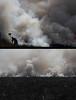 FOTO: PAULO ROSSI (paulo_rossi_foto) Tags: campo paulo fogo incendio mata rossi fumaça queimada devastação