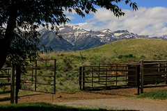 Ranch Gate (andrewpug) Tags: ranch horses horse beautiful beauty nice scenery gate scene