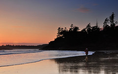 Sunset Stroll (Orbittrap) Tags: blue sunset orange beach photography evening coast photo sand do waves bc pacific walk picture wave vancouverisland pacificocean longbeach tofino westcoast stroll dogwalk sandybeach theisland mackenziebeach d90 middlebeachlodge beachphotography beachphoto beachpicture bcphotography