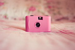 rose  (Natlia Viana) Tags: pink cute love rose lomo sweet cmera natliaviana toycmera aquapix