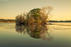 Henderland Island (.Brian Kerr Photography.) Tags: trees light lochmaben castleloch ☆thepowerofnow☆ henderlandisland