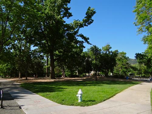 Photo - Boulder Central Park