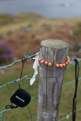 Item pole (thillege.com) Tags: wood travel ireland flower green galway canon eos dof bokeh memories pole depthoffield connemara items waterside 600d canonef28mm18 thillege timhillege