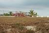 Las Sirenas Landscape (edrodzen) Tags: court santaclara panama lassirenas