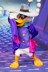 DDE May 2013 - Dreams of Glory (PeterPanFan) Tags: travel vacation france canon spring europe character may disney characters disneylandparis dlp disneylandresortparis dde waltdisneystudios disneycharacters disneycharacter marnelavallée disneychannel darkwingduck 2013 drakemallard waltdisneystudiospark disneyparks disneydreamers canoneos5dmarkiii dreamofglory dreamsofglory seasonsholidaysandevents disneydreamerseverywhere magicmoviedreams meetanddream meetanddreams disneytvstars