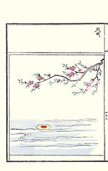 Peach (Japanese Flower and Bird Art) Tags: flower art japan japanese book picture peach tani kano woodblock prunus rosaceae buncho tosa persica mitsusada readercollection