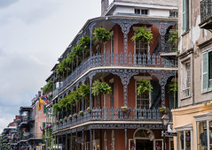 Classic French Quarter (Marcy Leigh) Tags: city travel sky plants building architecture balcony neworleans frenchquarter nola shelter curved 116picturesin2016 classicfrenchquarter