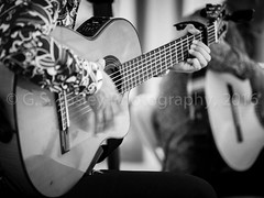 Julio & Cesar (G.S. Easley Photography - 1.4 MILLION VIEWS! THANK) Tags: musician lasvegas guitar nevada rumba streetmusician juliocesar