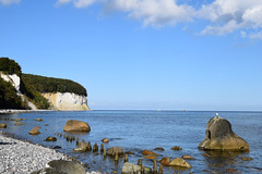 """C.D.Fs World I... (farsighted.as """"WHAT I LIKE TO SEE"""") Tags: blue sea cliff tree nature landscape island coast baltic insel rgen ostsee whitecliff cdfriedrich balticcoast"""
