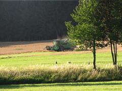 ...sehr staubig! ...very dusty! (elisabeth.mcghee) Tags: harvest getreide mhdrescher