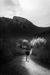 *** (dgiannis89) Tags: trees winter bw mountain rock forest path greece