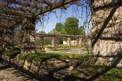 Vreta kloster (Yvonne L Sweden) Tags: flowers spring sweden ruin may linkping pergola vr vretakloster klosterruin